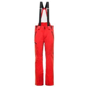 schi pantaloni Spyder pentru bărbați Bormio GTX 181712-620, Spyder