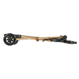 Copii rătăcitor Micro tricicleta Deluxe Aur, Micro